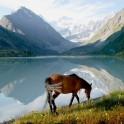 Туры на Алтай: земля духов