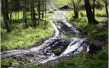Дорога к водопадам
